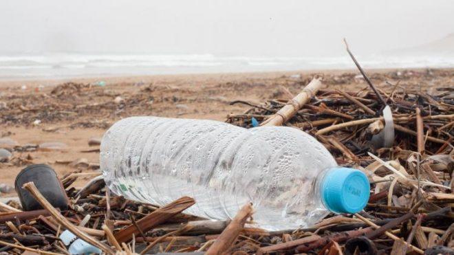 Czy plastik jest wszędzie?
